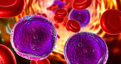 Stock image of blood cells and cancer cells